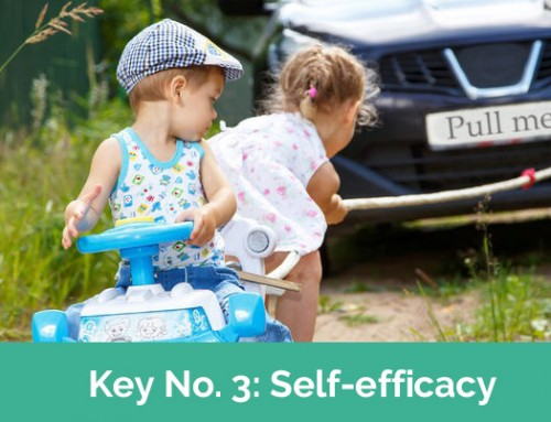 Self-Efficacy – Key. No. 3/7